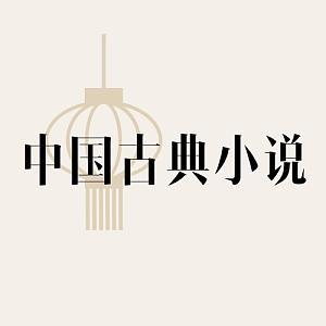 chinese-novel